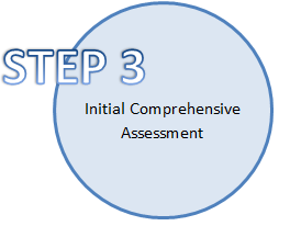 Step 3 Initial Comprehensive Assessment